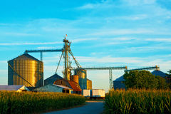Golden Hour Grain Silos stock image