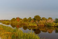 Golden Hour at Merritt Island National Wildlife Refuge, Florida. USA stock photos
