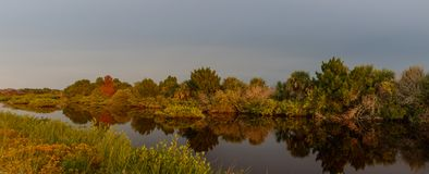 Golden Hour at Merritt Island National Wildlife Refuge, Florida. USA royalty free stock images