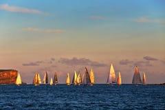 Golden hour yacht race Stock Photos