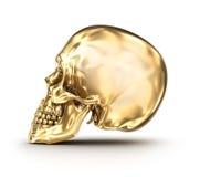 Golden human skull over white Royalty Free Stock Image