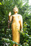 Golden image of Buddha is standing in a bush Stock Photos
