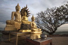 Golden image of buddha. Tree golden image of buddha in Thailand Stock Photos