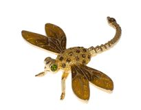 Golden jewel dragonfly Royalty Free Stock Images