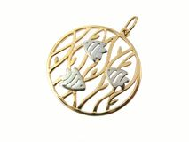 Golden jewelry Stock Images