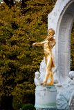 Golden Johann Strauss Royalty Free Stock Photo