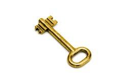 Golden key. On white background stock images