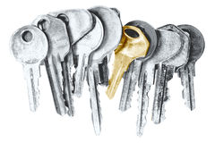 Golden key. In a bunch of silver ones Royalty Free Stock Photo