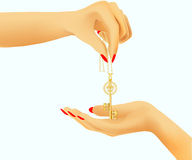 Golden key in hand Royalty Free Stock Image