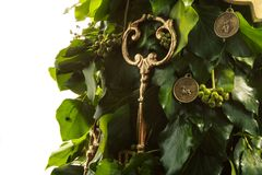 Golden key on New Year tree Stock Image