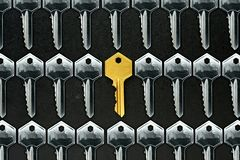 Golden key among ordinary keys Stock Image