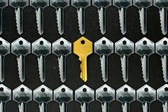 Golden key among ordinary keys Stock Image