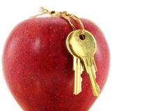 Golden key and red apple Stock Image