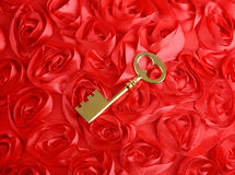 Golden Key with rose petals as symbol of love Royalty Free Stock Image