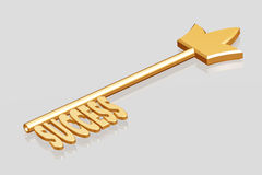 Golden key to success Royalty Free Stock Photography