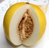 Golden king melon Stock Photo
