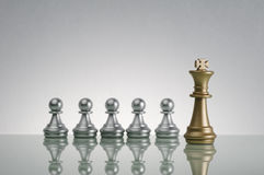 Golden King and  Silver Pawn - Leadership Concept Stock Photography