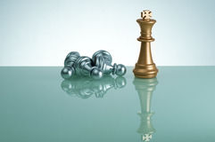 Golden King and  Silver Pawn - Leadership Concept Stock Images
