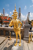 Golden Kinnari statue at Temple of Emerald Buddha (Wat Phra Kaew stock photo