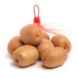 Golden kiwifruit/ kiwi (Actinidia chinensis). On white background Royalty Free Stock Photo