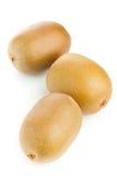 Golden kiwifruit/ kiwi. Whole golden kiwifruit/ kiwi (Actinidia chinensis) on white background Stock Photo
