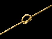 Golden knot. Stock Image