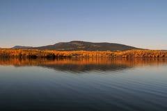 Golden Lake Stock Photos