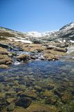 Golden lake at gredos mountains Royalty Free Stock Photography