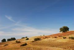 Golden landscape. Golden evening sunlight over autumn hills stock photos