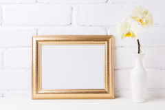 Golden  landscape frame mockup with soft yellow orchid in vase. Golden landscape frame mockup with soft yellow orchid in vase. Empty frame mock up for Royalty Free Stock Image