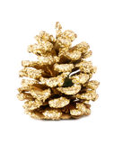 Golden large pine cone Royalty Free Stock Image