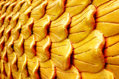 Golden layer texture Stock Photography