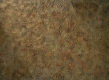 Golden leaf Royalty Free Stock Images