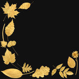 Golden Leaf Selection Royalty Free Stock Photo
