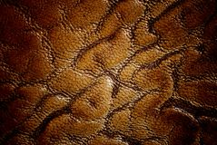 Golden leather Royalty Free Stock Images