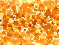 Golden leaves. Autumn fall background with golden leaves royalty free illustration