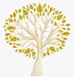 Golden  leaves. Autumn tree . jewelry Stock Photos