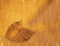 Golden leaves background. Golden artificial leaves on golden background stock illustration