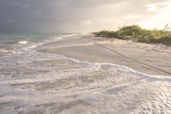 Golden light on Caribbean beach Stock Photo