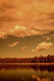 Golden light forest lake Royalty Free Stock Photography