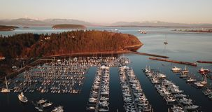Golden light hits the point at Cap Sante in Anacortes Washington. The marina is full of moored boats in Fidalgo Bay at Anacortes Washington stock video