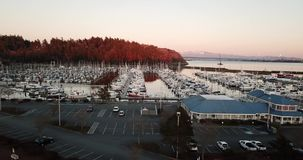Golden Light Hits the Point at Cap Sante in Anacortes Washington. The marina is full of moored boats in Fidalgo Bay at Anacortes Washington stock footage
