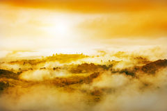 Golden light and misty Royalty Free Stock Image