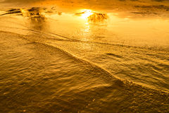 Golden light reflecting off a water wave at the sea and sand on sunset Royalty Free Stock Image