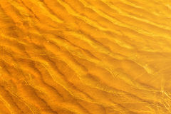 Golden light reflecting off a water wave at the sea and sand on sunset. Royalty Free Stock Photo