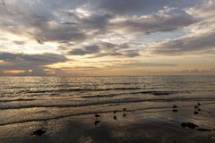 Golden Light After Sunrise Florida Beach Stock Photo