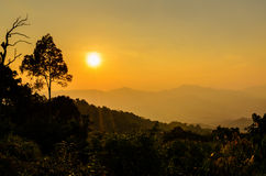 Golden light of sunset Royalty Free Stock Photography