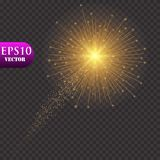 Golden Lights Background. Christmas Lights Concept. Vector illustration. vector illustration