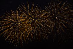 Golden firefireworks  in the night sky royalty free stock photo