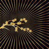 Golden lines background Royalty Free Stock Image